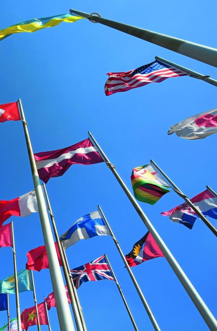 Master International Management | Master & Grande Ecole